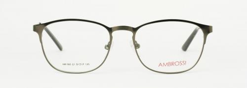 AM-560-C1NEW 2