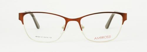 AM-561-C1NEW 2