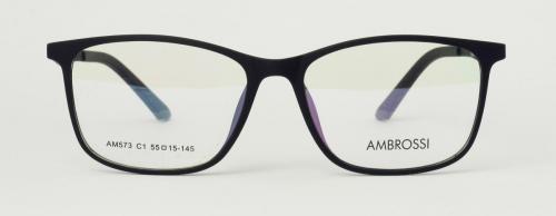 AM-573-C1 2