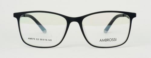 AM-573-C2 2