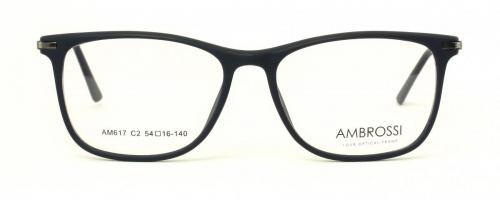 AM-617 C2 2