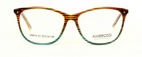 AM-619 C1 2