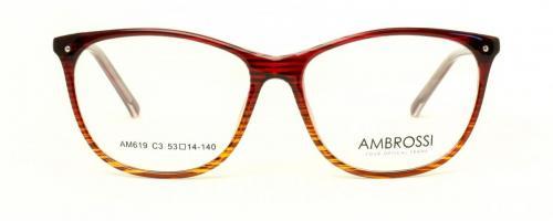 AM-619 C3 2